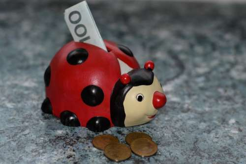 Ladybug Piggy Bank Money Finance Ceramic Coin
