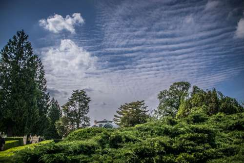Landscape Sky Clouds Scenic Nature Trees Green