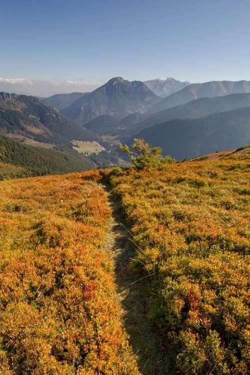 Landscape Mountains Nature Hills Alpine Tatras