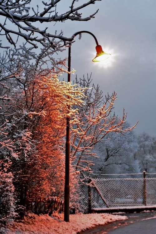 Lantern Lamp Post Winter Snow Light Cold Vote