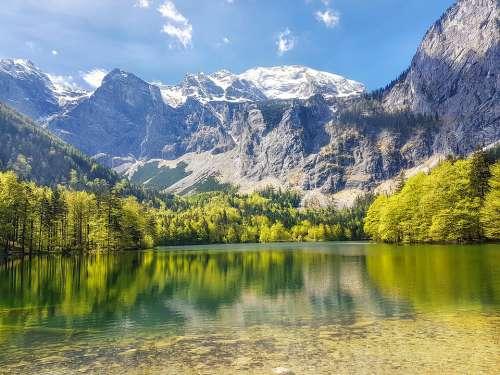 Leggy Lake Austria Water Nature Atmospheric