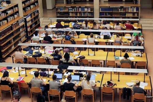 Library Study University Books I Am A Student