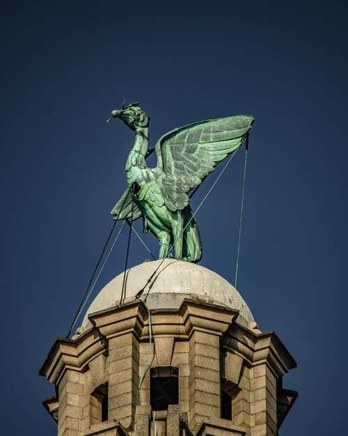 Liverpool Liver Bird Clock Tower Tower Building