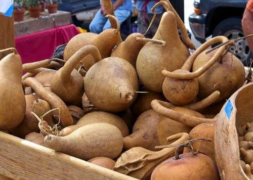 Market Hard Gourds Harvest Gourds Vegetables Market