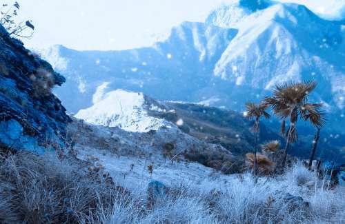 Nature Snowfall Season White Ice Landscape Winter