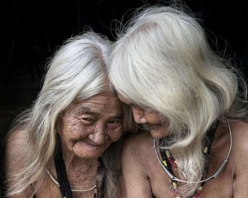 Old People Woman White Hair The Countryside Rustic