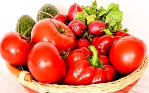 Organic Raw Ingredient Diet Ripe Nutrition Basket