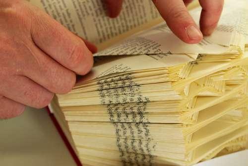 Paper Pages Book Fold Paper Art Decoration
