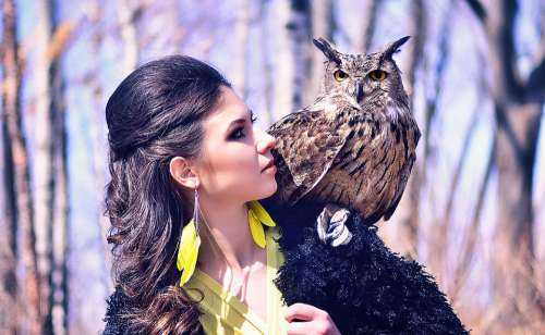 Portrait Woman Girl Beautiful Brunette Owl