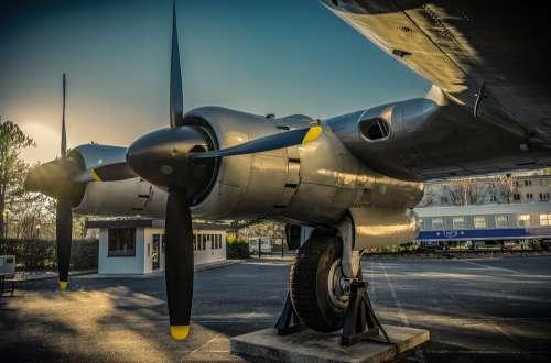 Propeller Aircraft Aviation Oldtimer Candy Bomber