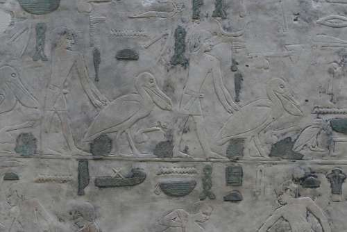 Relief Art Historically Egyptian Museum Antique