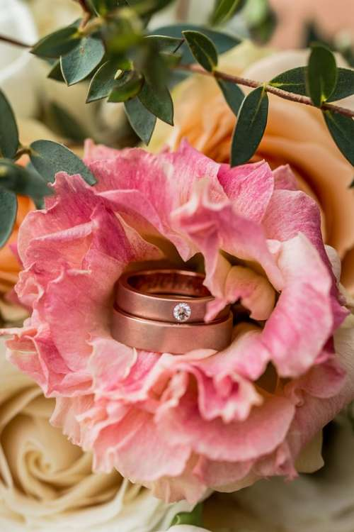 Ring Wedding Jewelry Bride Engagement Love Rings