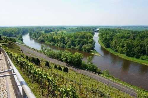 River Confluence Czechia Meadow Vineyard Vltava
