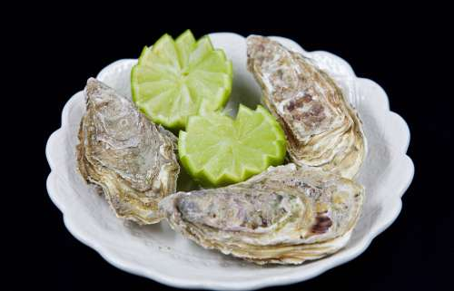 Seafood Lime Food Oysters Shell Delicious