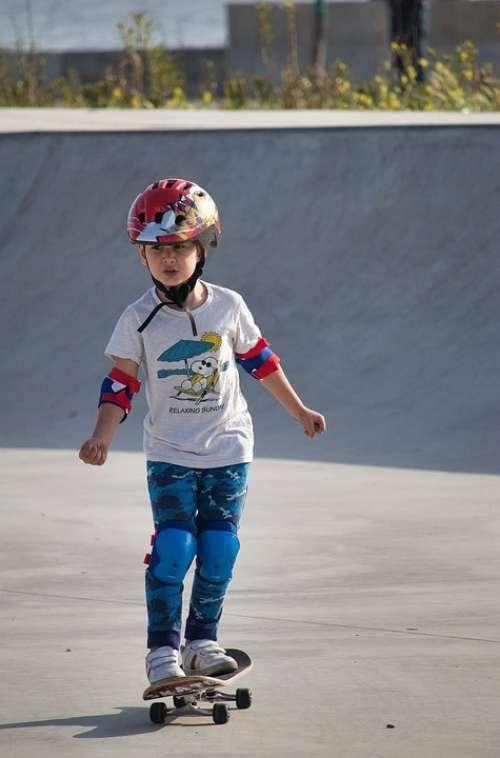 Skate Skateboard Skateboarding Skateboarder Skater