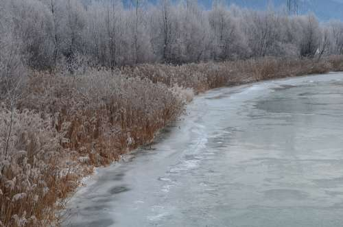 Snow Frost Ice Winter Cold Nature Frozen