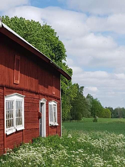 Sweden Barn Summer Idyll Rural Life Bed