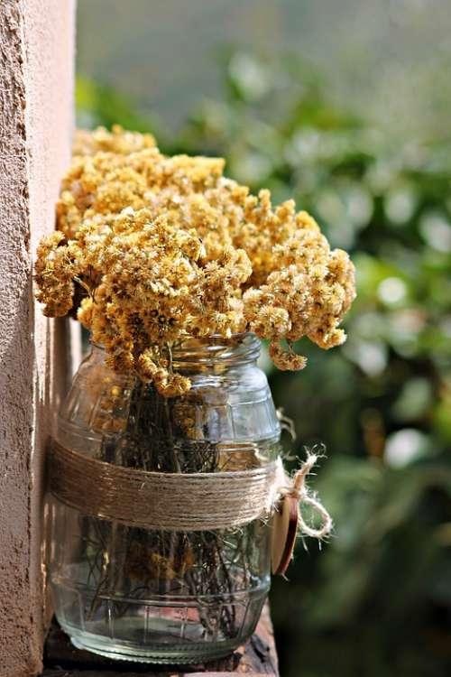 Trim Floral Dry Vintage Decorative Design