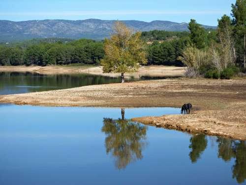Water Reflection Lake Blue Landscape Background