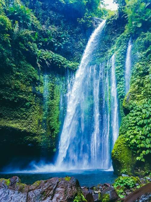 Waterfall Nature Water Whitewater Outdoors Jungle