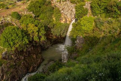 Waterfalls Trees Nature River Environment Waters