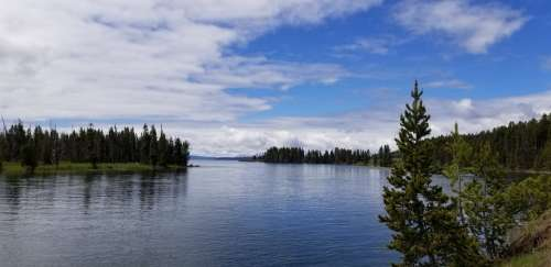 Wyoming Lake Nature Water Landscape Forest Trees