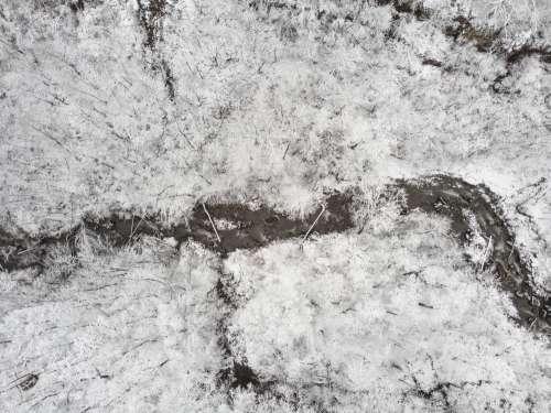 A Stream Cut Dark Shapes Through The Snow Photo