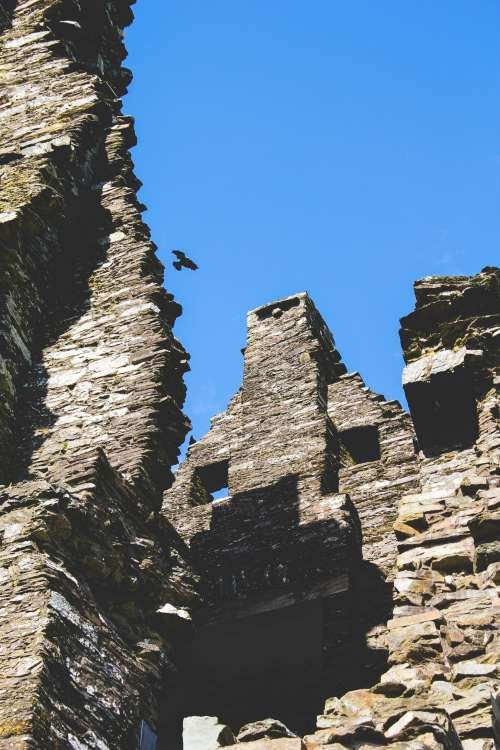 Lone Crow Floats On Wind Up The Wall Of A Rustic Castle Photo