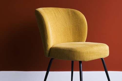 Mustard Chair Photo