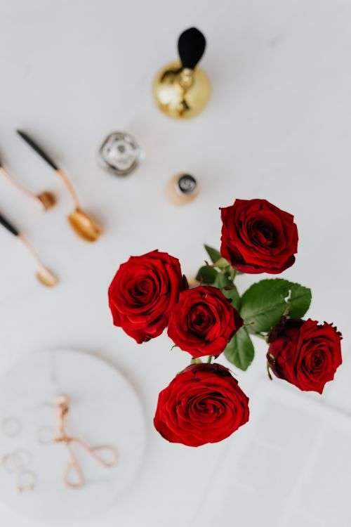 Red roses, gold jewellery and beauty accessories on white marble