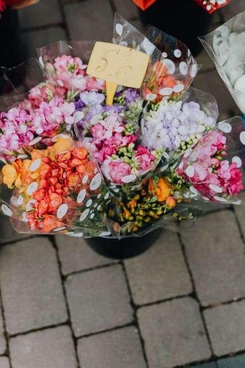 Flower shops in Madrid, Spain