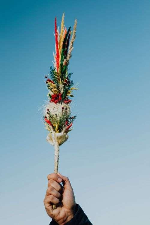 Palm Sunday - Niedziela Palmowa