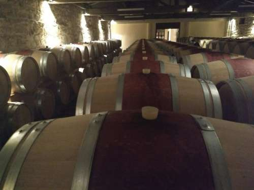 Wine barrels vineyard gloom bordeaux cellar