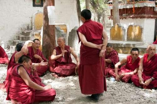 Tibet  Tibetan monks monk shrine  study  meditation