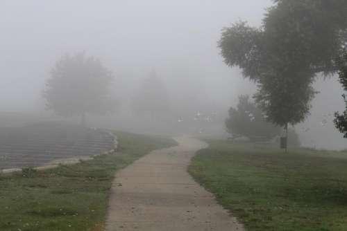 #sidewalk #park #fog