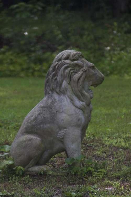 Lion Stone Statue #lions