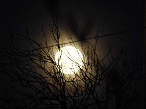 full moon lunar moon night