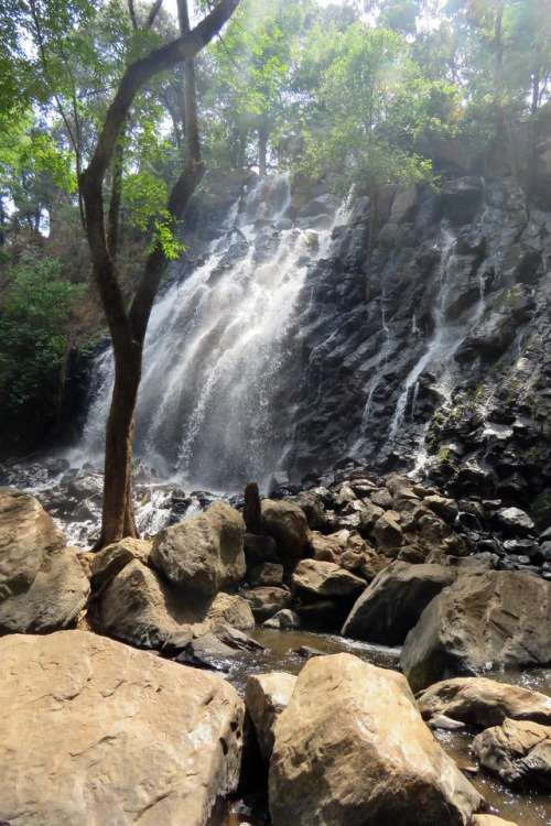 waterfall mexico water forest tree