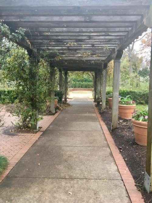 arbor trellis garden path