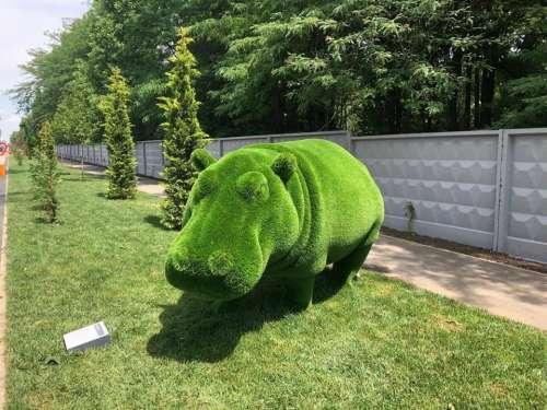 sculpture animals animal hippopotamus hippo
