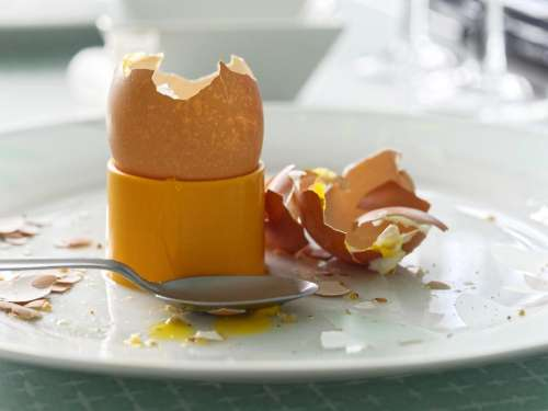 food egg boiled egg eggshell yellow eggcup