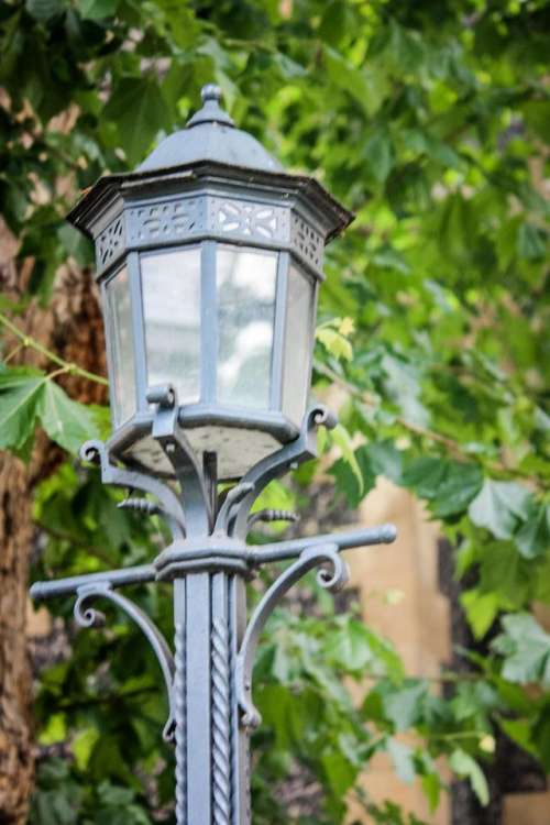 lamp light lamplight park streetlight