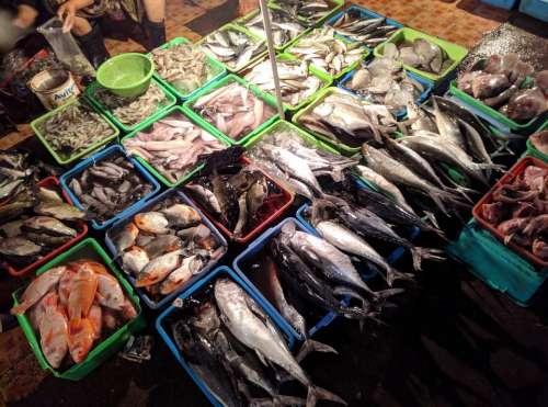 Fresh Fish seafood market food