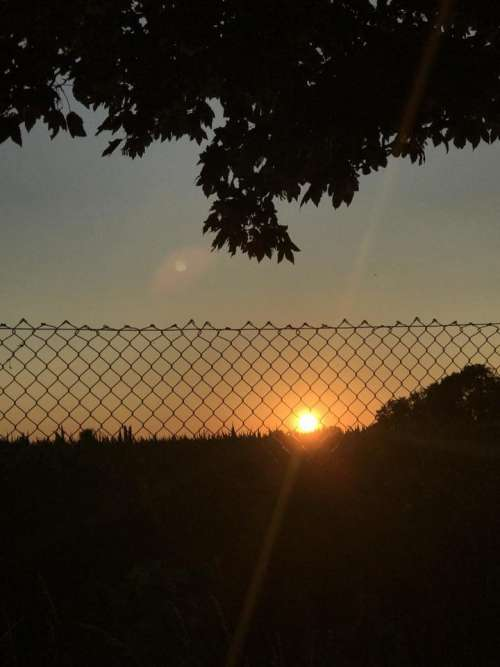 Sunset sunrise Sun sunlight