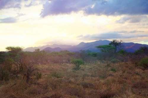Africa Tsavo Kenya Safari National Park