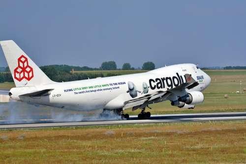 Aircraft Flight Transport Sky Fly Technology