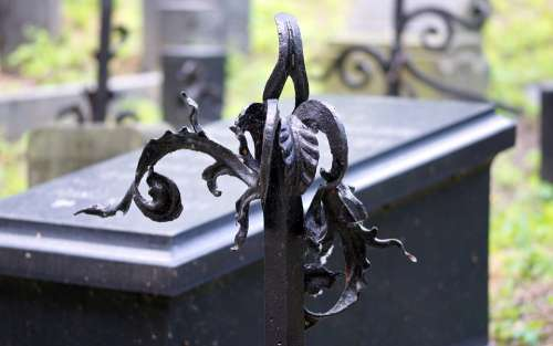 Art Metal Leaves Black Fence Cemetery The Funeral