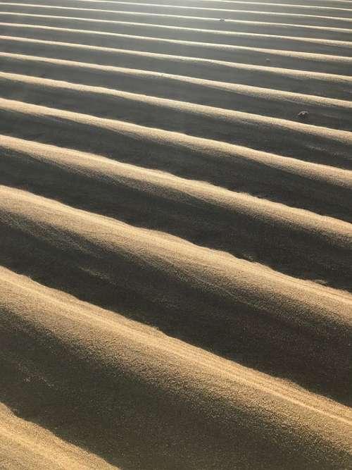 Beach Australia Queensland Nature Tide Ridges
