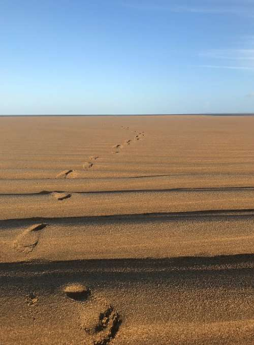Beach Footprints Sand Sun Light Ridges Lines Sea