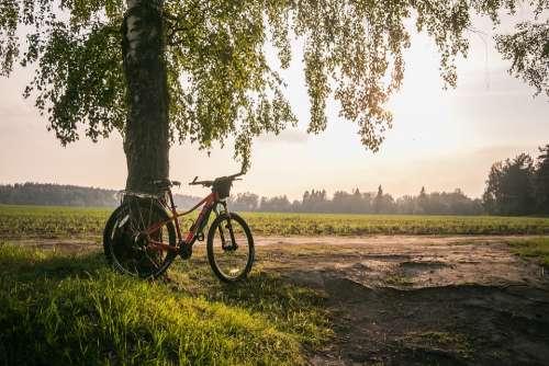 Bike Summer Nature Leisure Sports Travel Road